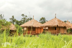 Volunteer accomodation at Elephant Sanctuary Cambodia