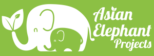 Asian Elephant Projects
