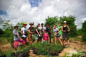 Volunteering at Surin Project Thailand