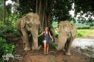 Intimate encounter with elephants at at ethical elephant sanctuary near Chiang Mai in Thailand