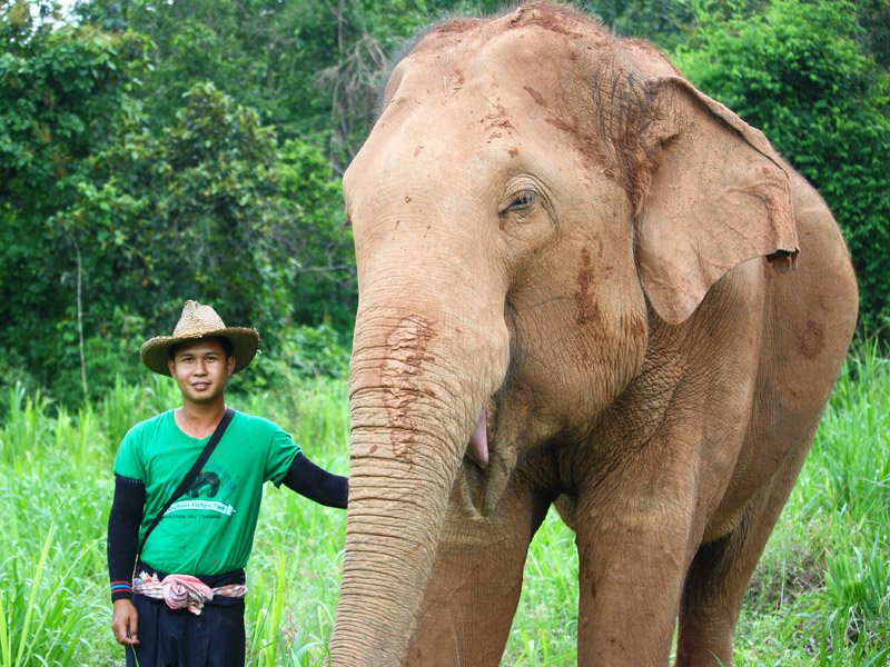 Owners Karen Elephant Serenity ethical elephant tour Chiang Mai Thailand