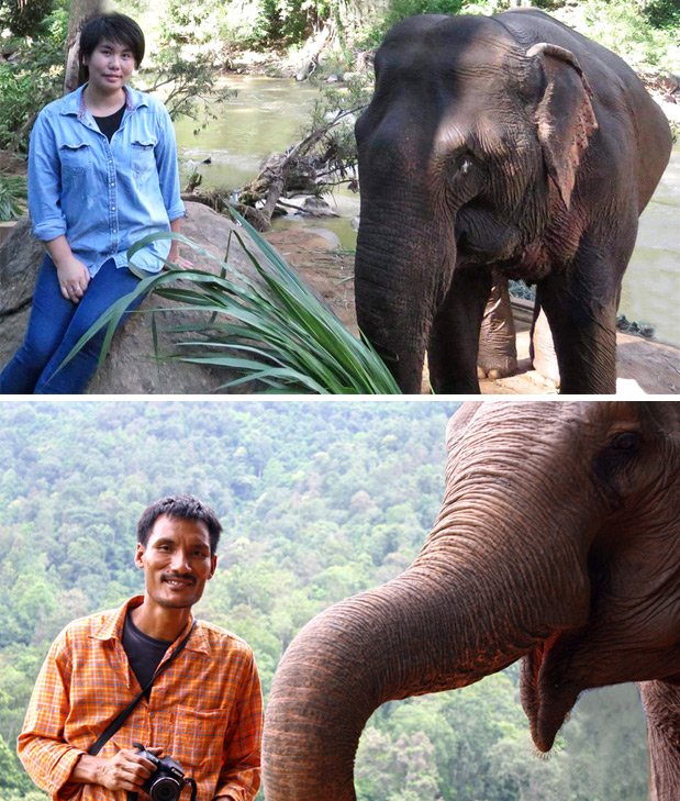 Majestic_Elephant_Project_Owners