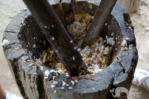 making food for elephants at karen elephant oasis
